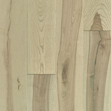 Shaw Floors Fischer Homes Foley Ash Native 01026_FSH68
