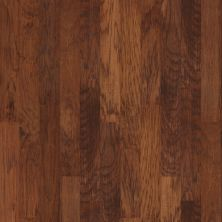 Shaw Floors To Go Hardwood Cambrian Harvest 00842_FW118