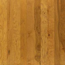 Shaw Floors To Go Hardwood Gooding Buckskin 00215_FW155