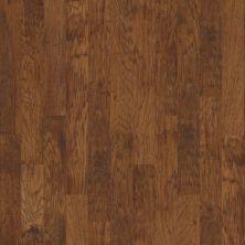 Shaw Floors Ftg Builder 42fgw Cider 00221_FW602