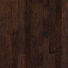 Shaw Floors Ftg Builder 42fgw Espresso 00917_FW602