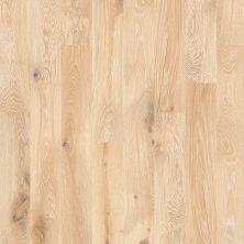 Shaw Floors To Go Hardwood Palisades Oak Tapestry 00146_FW646