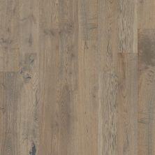 Shaw Floors To Go Hardwood Palisades Oak Armory 00508_FW646