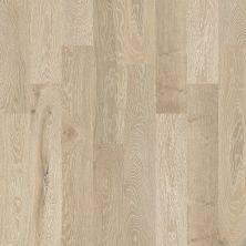 Shaw Floors To Go Hardwood Palisades Oak Tower 00524_FW646