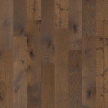 Shaw Floors To Go Hardwood Palisades Oak Arrow 00533_FW646