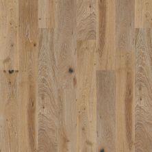 Shaw Floors To Go Hardwood Palisades Oak Chatelaine 01010_FW646