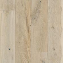Shaw Floors To Go Hardwood Palisades Oak Renaissance 01070_FW646