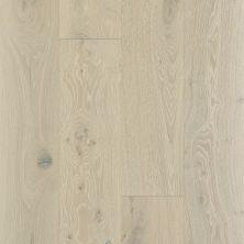 Shaw Floors To Go Hardwood Palisades Oak Knight 01075_FW646
