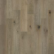 Shaw Floors To Go Hardwood Palisades Oak Palisade 05022_FW646