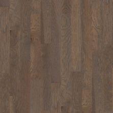 Shaw Floors Ftg Epic Plus Grenada Hickory5 Granite 00510_FW656