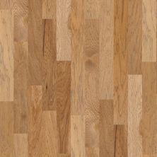 Shaw Floors Ftg Epic Plus Grenada Hickory5 Bravo 02002_FW656