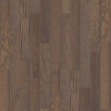 Shaw Floors Ftg Epic Plus Grenada Hickory5 Crystal Cave 05003_FW656