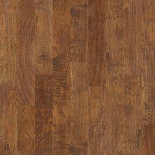 Shaw Floors Ftg Epic Plus Elijah Hickory 6.38 Woodlake 00879_FW659