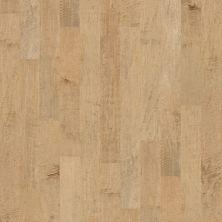 Shaw Floors Ftg Epic Plus Mercer Maple 5″ Gold Dust 01001_FW662
