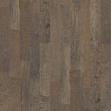 Shaw Floors Ftg Epic Plus Mercer Maple 5″ Timberwolf 05002_FW662