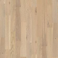 Shaw Floors To Go Hardwood Whitby Vanderbilt 01015_FW676