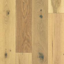 Shaw Floors To Go – Waterproof Hardwood Wrightwood Harvest Oak 02056_FW686