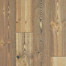 Shaw Floors To Go – Waterproof Hardwood Wrightwood Spiced Pine 06004_FW686