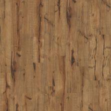 Shaw Floors Versalock Laminate Timberline Lumberjack Hckry 00786_GT012