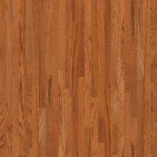 Shaw Floors Richmond American Homes Cypress 2.25 Gunstock 00609_HA039