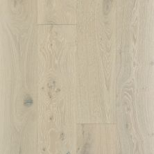 Shaw Floors Richmond American Homes Addison Oak Knight 01075_HA075