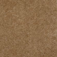 Shaw Floors Property Solutions Davenport Burlap 06185_HF006
