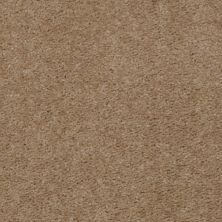 Shaw Floors Property Solutions Davenport II Driftwood 42130_HF142
