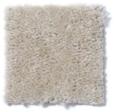 Shaw Floors Property Solutions Stonecrest Fleece 14112_HF214