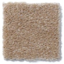 Shaw Floors Property Solutions Stonecrest Warm Nutmeg 14115_HF214