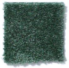 Shaw Floors Property Solutions Stonecrest Flowering Cactus 14311_HF214