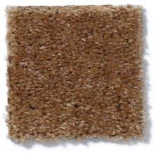 Shaw Floors Property Solutions Stonecrest Harness Brown 14711_HF214