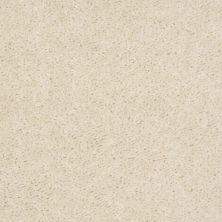 Shaw Floors Property Solutions Stonecrest II Biscuit 00101_HF597