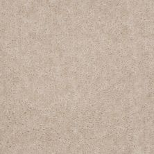 Shaw Floors Property Solutions Stonecrest II Fleece 00102_HF597