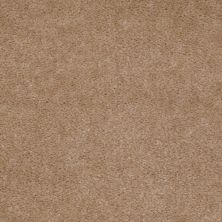 Shaw Floors Property Solutions Stonecrest II Warm Nutmeg 00105_HF597