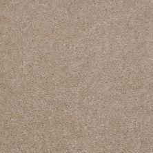 Shaw Floors Property Solutions Stonecrest II Chipmunk 00170_HF597