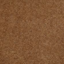 Shaw Floors Property Solutions Stonecrest II Harness Brown 00701_HF597