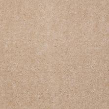 Shaw Floors Property Solutions Viper Classic Split Oak 00111_HF862