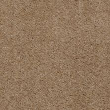 Shaw Floors Home Foundations Gold Magnolia Walk Truffle Tone 04150_HG204