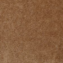 Shaw Floors Home Foundations Gold Warrior Classic Roasted Pecan 00201_HGC80