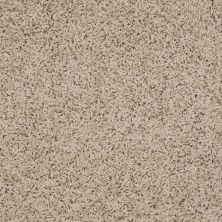 Shaw Floors Home Foundations Gold Short & Sweet (s) Bleached Straw 00106_HGJ65