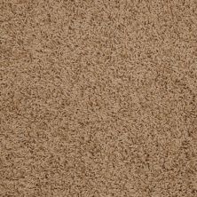 Shaw Floors Home Foundations Gold Short & Sweet (s) Sahara 00201_HGJ65