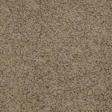 Shaw Floors Home Foundations Gold Short & Sweet (s) Wild Fern 00301_HGJ65
