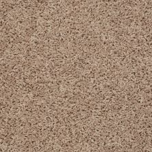 Shaw Floors Home Foundations Gold Simple Times Vintage Gold 00201_HGJ77