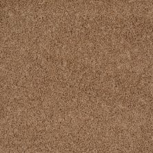 Shaw Floors Home Foundations Gold Prime Twist Buckwheat 00107_HGL04