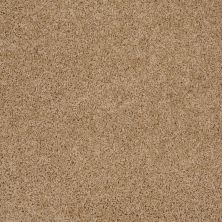 Shaw Floors Home Foundations Gold Prime Twist Filoli Honey 00201_HGL04