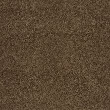 Shaw Floors Home Foundations Gold Prime Twist Sage Leaf 00304_HGL04