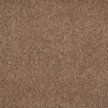 Shaw Floors Home Foundations Gold Prime Twist Twill 00700_HGL04
