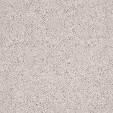 Shaw Floors Home Foundations Gold Yarrow Bay Crystal Gray 00500_HGL38