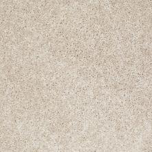 Shaw Floors Home Foundations Gold Favorite Choice 12′ Sailcloth 00100_HGL45