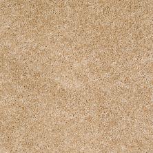 Shaw Floors Home Foundations Gold Favorite Choice 12′ Light Aspiration 00101_HGL45